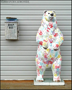 """HANDY BEAR"",Bearfest,Wrangell,Alaska,USA."