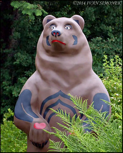 """FANCY BEAR 1"",Bearfest,Wrangell,Alaska,USA."