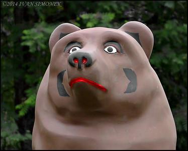 """""""FANCY BEAR 2"""",Bearfest,Wrangell,Alaska,USA."""
