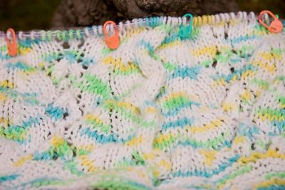 Lemon Lime Berry Baby Blanket