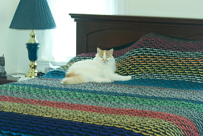 trellis stitch blanket - circa 1988