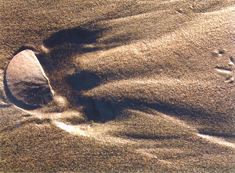 God's Footprints