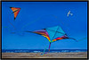 This composite of 3 photos from the kites Jinx and I saw at Port Aransas beach celebrates the event. March, 2015.
