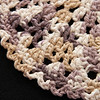 Simple Dishcloth_122008_0018