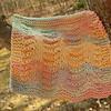 Texture Shells_Feb192009_0002