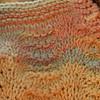 Texture Shells_Feb192009_0007
