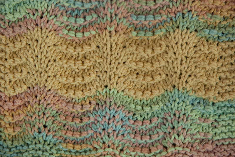 Texture Shells_Feb192009_0017