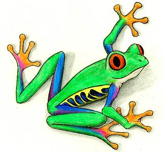 Tree Frog Cartoon