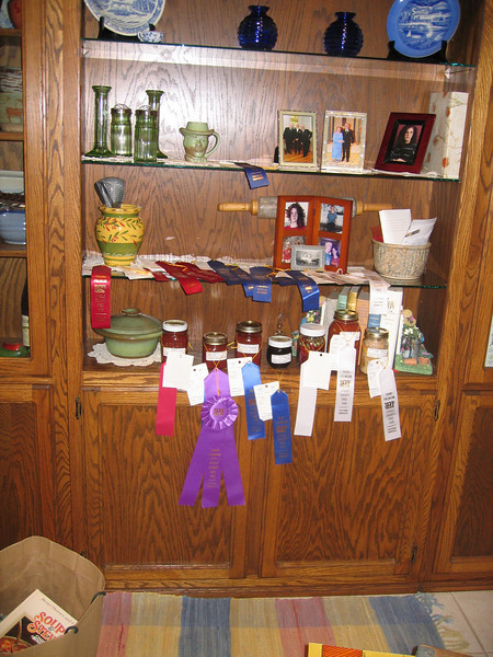 2007 County Fair ribbons