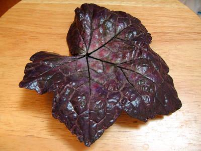 Cast Leaf #3 - Heuchera