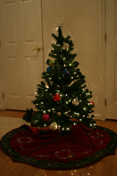 I got a 4' tall, pre-lit, fake Christmas tree in 2006.  There were no small-tree toppers, so I made a bow.  It didn't turn out too well.