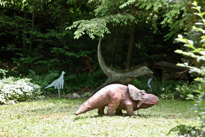 Proto Ceratops