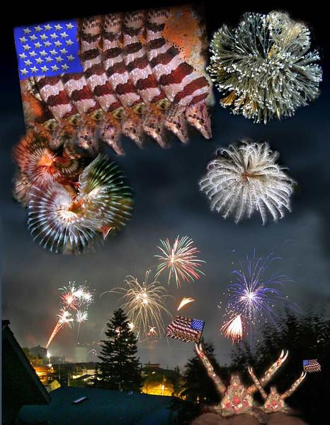 Fourth of July celebration :)