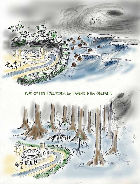 cartoon for Earth Economics. Supporting less costly and more effective solution to Katrina-like disasters ..