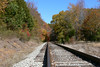 Rails to Fall - CSX Railroad, Bruceton, Tennessee