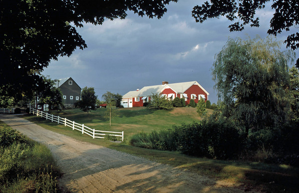 Family Farm, Westford, Massachusetts