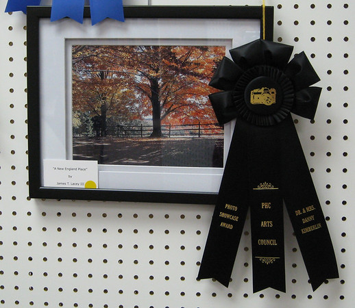 An Honorable Mention award at the Paris TN Photo Showcase. The photo was taken in the town of Harvard MA.
