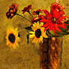 """32x24"""" Zinnia's Arranged    Canvas Print       Available in other sizes"""