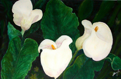 Calla Lillies 2 Watercolor on 140 pound Lana watercolor paper c. 2001 28.5 inches x 21.5 inches. My mom drew this composition based on calla lillies growing outside my California apartment. I did most of the painting on this one. This painting is different from Calla Lillies #1 in many ways - - partially that's because the watercolor paper is thinner and the same techniques couldn't be used.