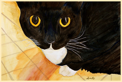 Kato Eyes Watercolor on 300 pound Arches watercolor paper c. 2003 22 inches x 15 inches Kato was my pet cat.  She passed away.