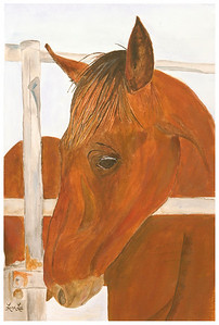 Horse Watercolor on 300 pound Arches watercolor paper c. 2003 22 inches x 15 inches