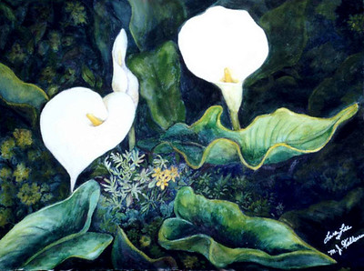 Calla Lillies  Watercolor on 300 pound Arches watercolor paper c. 2000. 29.5 inches x 21.5 inches. I drew this composition based on a photograph and began the piece by doing most of the underpainting. My mom finished the painting when she came out to visit me in California for the first time.