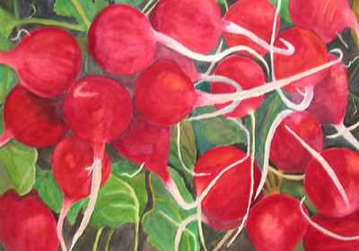 Organic Radishes Watercolor on 300 pound Arches watercolor paper c. 2004 22 inches x 30 inches This is based off of a photo of organic radishes from Jimbos grocery.