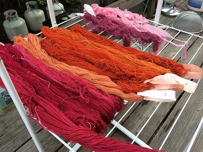 Natural Dyeing Workshop at Alpenglow Yarn