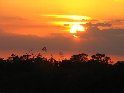 Florida sunsets (18)