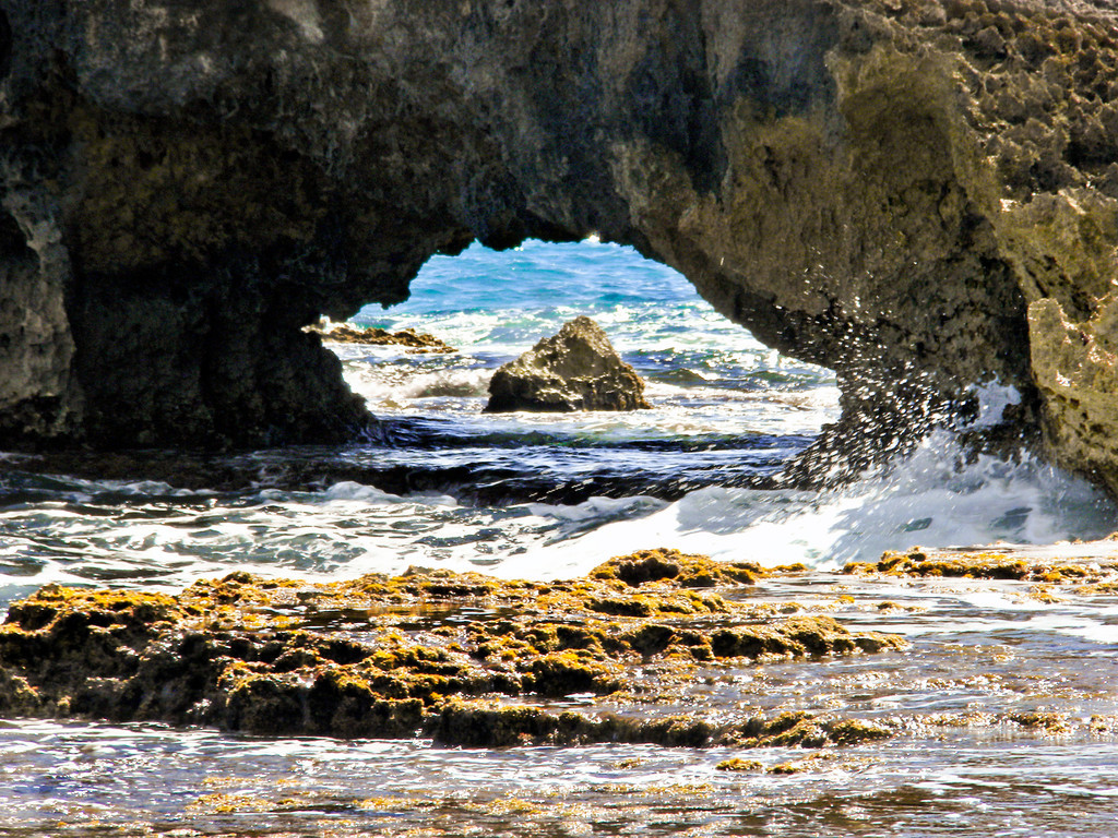 Cozumel seashore