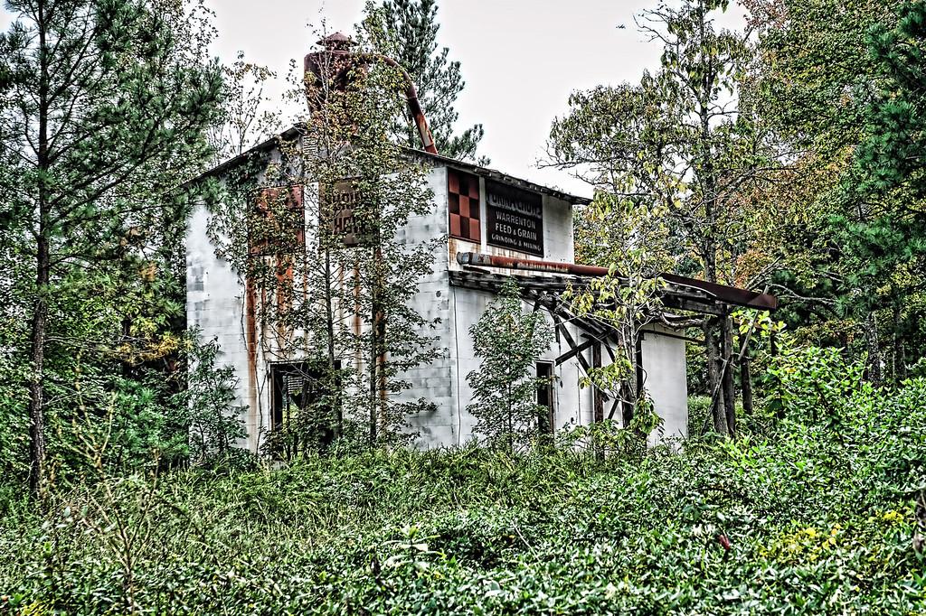 Abandoned feed store - Warrenton, NC