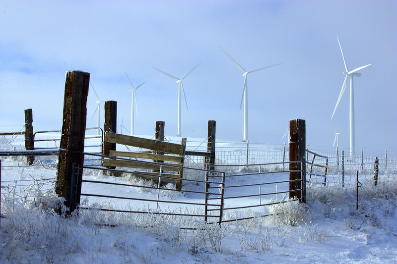 Dalles mountain rd`   I won second place at the show for this Picture I called the Gate to the Wind Mills