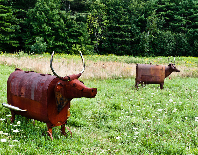 Cow and bull grills.