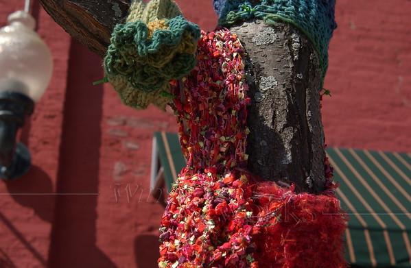 Yarn-bombed tree