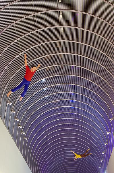 I Dreamed I Could Fly by Jonathan Borofsky
