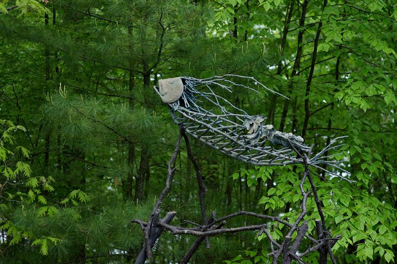 Acadian Gyro by Ed Shay
