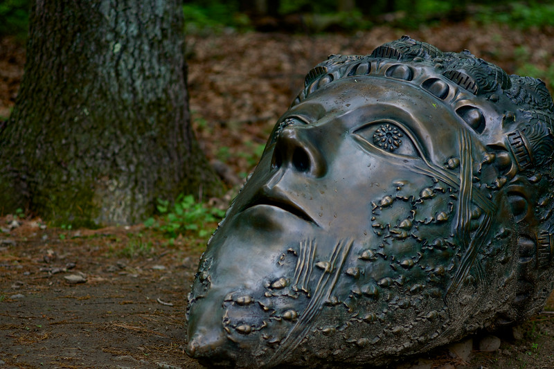 Colossal Acorn Head by Leslie Fry