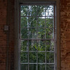 Brick, Glass and Trees