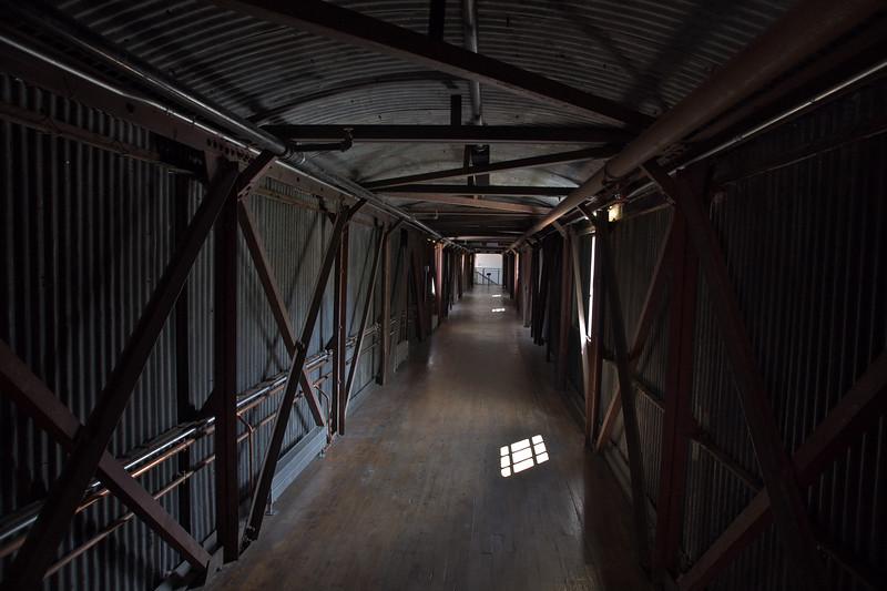In Harmonicity, the Tonal Walkway by Julianne Swartz