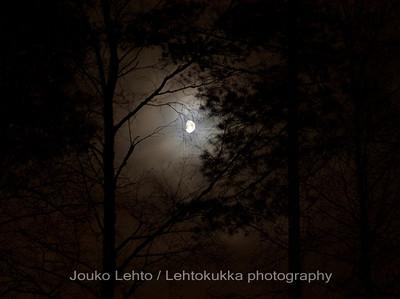 Kuutamolla - Moonshine