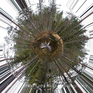 This little planet 07