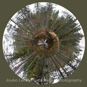 This little planet 08