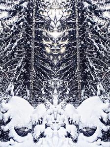 Winter forest Spirits