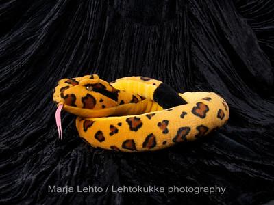 Spotty Snake