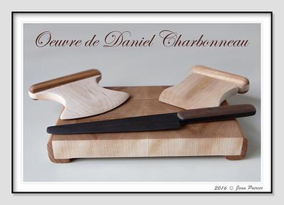 Tout de bois Oeuvres de Daniel Charbonneau