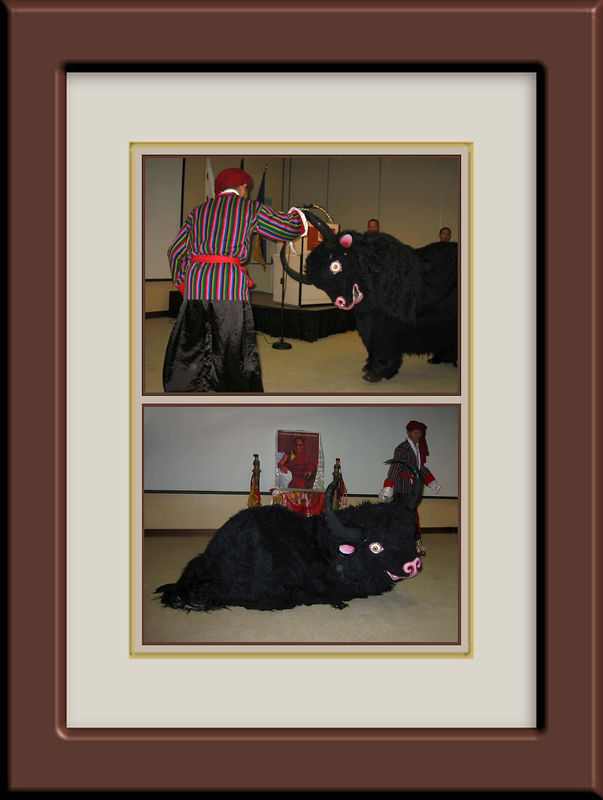 Yak dancing with man [2 shots, borders, Brownish purple with white mat frame]