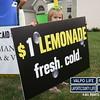 LemonAID-2010 (8)
