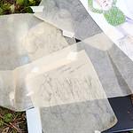 barecloth_234