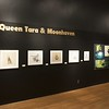 artspace exhibit; The Making of Epic and Moonhaven
