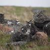 Steinskvett / Northern Wheatear<br /> Verevågen, Lista 10.5.2013<br /> Canon EOS 5D Mark II + EF 100-400 mm 4,5-5,6 L